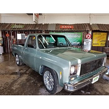 1979 Chevrolet C/K Truck for sale 101143217