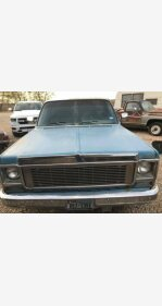 1979 Chevrolet C/K Truck for sale 101191781