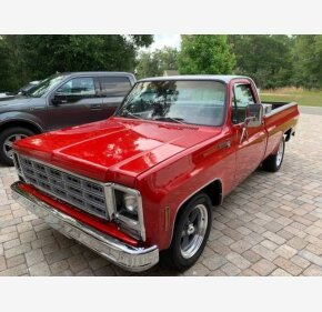 1979 Chevrolet C/K Truck Scottsdale for sale 101338278