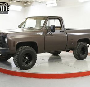 1979 Chevrolet C/K Truck for sale 101346253