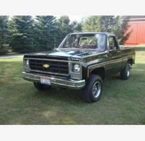 1979 Chevrolet C/K Truck Scottsdale for sale 101352481