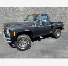 1979 Chevrolet C/K Truck for sale 101360152