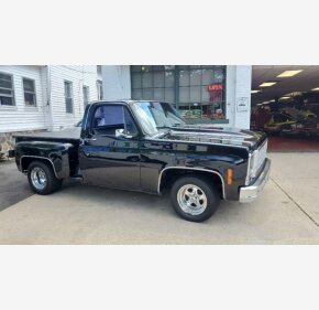 1979 Chevrolet C/K Truck for sale 101365992