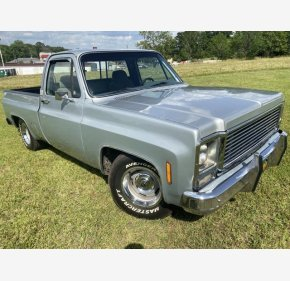 1979 Chevrolet C/K Truck for sale 101374205