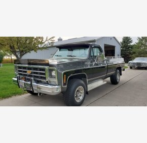 1979 Chevrolet C/K Truck for sale 101385803