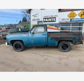1979 Chevrolet C/K Truck for sale 101405729