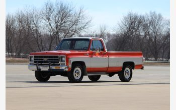 1979 Chevrolet C/K Truck Scottsdale for sale 101461815
