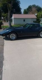 1979 Chevrolet Corvette for sale 101373872