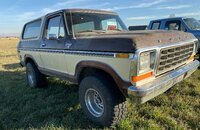 1979 Ford Bronco for sale 101232803