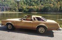 1979 Ford Thunderbird for sale 101404259