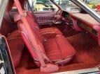 1979 Ford Thunderbird for sale 101531040