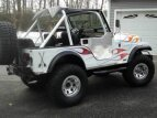 1979 Jeep CJ-5 for sale 101509516