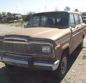 1979 Jeep Wagoneer for sale 101383937