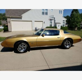 1979 Pontiac Firebird for sale 101027118