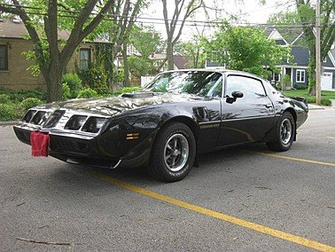 1979 Pontiac Firebird for sale 101307361