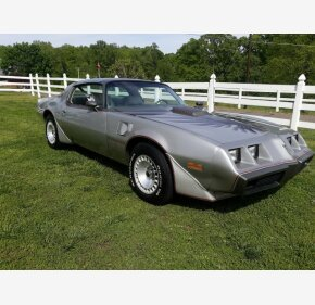 1979 Pontiac Firebird for sale 101328913