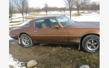 1979 Pontiac Firebird Coupe for sale 101461168