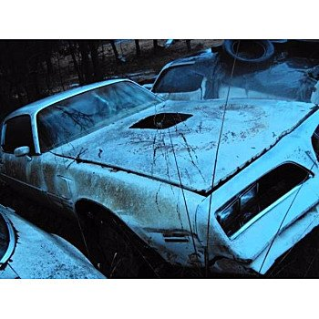 1979 Pontiac Firebird for sale 101537662