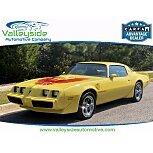 1979 Pontiac Firebird Coupe for sale 101580597