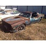 1979 Pontiac Firebird for sale 101626340