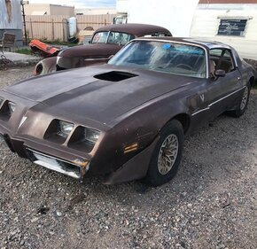 1979 Pontiac Trans Am for sale 101143620