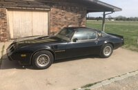 1979 Pontiac Trans Am for sale 101271259