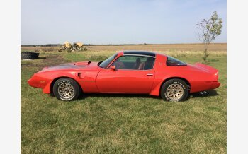 1979 Pontiac Trans Am for sale 101401547