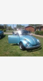 1979 Volkswagen Beetle Convertible for sale 101001502