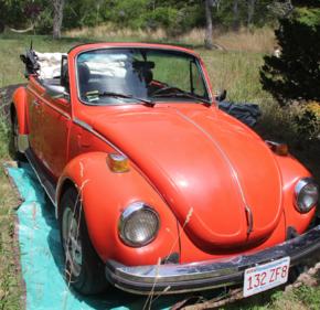 1979 Volkswagen Beetle Convertible for sale 101064129