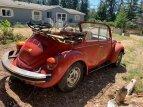 1979 Volkswagen Beetle Super Convertible for sale 101555227