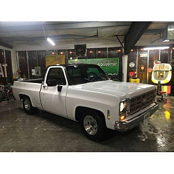 1980 Chevrolet C/K Truck Silverado for sale 101090303