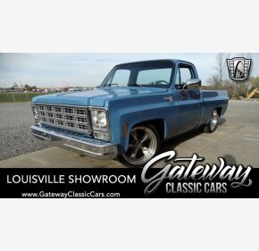 1980 Chevrolet C/K Truck Scottsdale for sale 101410348
