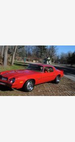 1980 Chevrolet Camaro for sale 101064467