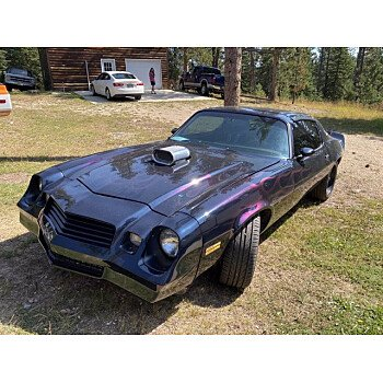 1980 Chevrolet Camaro for sale 101373712