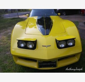 1980 Chevrolet Corvette for sale 101342007