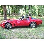 1980 Chevrolet Corvette for sale 101573900