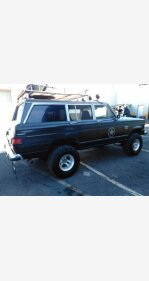 1980 Jeep Wagoneer for sale 100838759