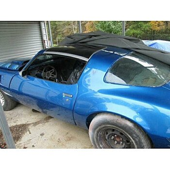 1980 Pontiac Firebird for sale 100827251