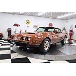 1980 Pontiac Firebird for sale 101508694