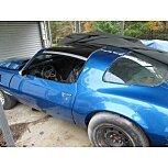 1980 Pontiac Firebird for sale 101586739