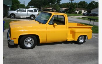 1981 Chevrolet C/K Truck 2WD Regular Cab 1500 for sale 101343729