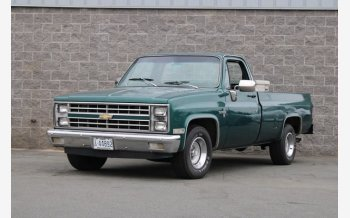 1981 Chevrolet C/K Truck 2WD Regular Cab 1500 for sale 101505974