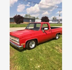 1981 Chevrolet C/K Truck for sale 101215736