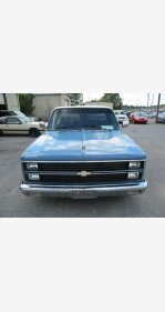 1981 Chevrolet C/K Truck 2WD Regular Cab 1500 for sale 101363493