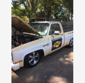 1981 Chevrolet C/K Truck for sale 101377346