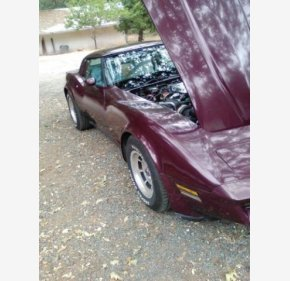1981 Chevrolet Corvette for sale 101036201