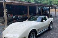 1981 Chevrolet Corvette Coupe for sale 101203572