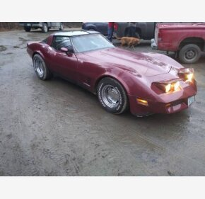 1981 Chevrolet Corvette for sale 101338282