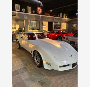 1981 Chevrolet Corvette for sale 101362313