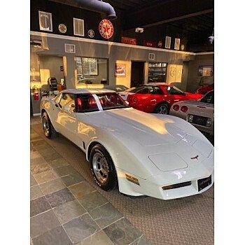 1981 Chevrolet Corvette for sale 101362313